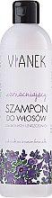 Voňavky, Parfémy, kozmetika Spevňujúci šampón na vlasy - Vianek Strengthening Shampoo