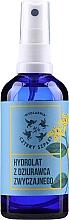Voňavky, Parfémy, kozmetika Ľubovník bodkovaný hydrolát na tvár, telo a vlasy - Cztery Szpaki