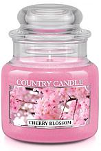 """Voňavky, Parfémy, kozmetika Vonná sviečka """"Blooming cherry"""" (tuba) - Country Candle Cherry Blossom"""