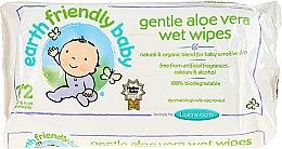 Voňavky, Parfémy, kozmetika Servítky detské čistiace - Earth Friendly Baby Aloe Vera Wet Wipes
