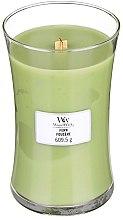 Voňavky, Parfémy, kozmetika Vonná sviečka v pohári - WoodWick Hourglass Candle Fern