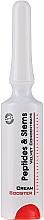 Voňavky, Parfémy, kozmetika Koncentrát-booster s kmeňovými bunkami a peptidmi - Frezyderm Peptides & Stems Cream Booster