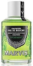 """Voňavky, Parfémy, kozmetika Ústna voda """"Mäta"""" - Marvis Concentrate Spreamint Mouthwash"""