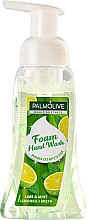 Voňavky, Parfémy, kozmetika Tekuté mydlo - Palmolive Magic Softness Foaming Handwash Lime & Mint
