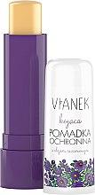Voňavky, Parfémy, kozmetika Upokojujúci balzam na pery so sezamovým olejom - Vianek Lip Balm