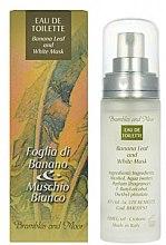 Voňavky, Parfémy, kozmetika Frais Monde Banana Leaf And White Musk - Toaletná voda