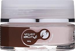 Voňavky, Parfémy, kozmetika Akryl na nechty, 12 g - Silcare Sequent Acryl