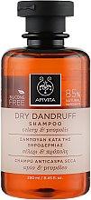 Voňavky, Parfémy, kozmetika Šampón proti lupinám - Apivita Shampoo For Dry Dandruff With Celery Propolis