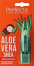 Voňavky, Parfémy, kozmetika Obnovujúci hygienický rúž, aloe vera a bambucké maslo - Perfecta Aloe Vera + Shea Lip Balm