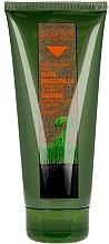 Voňavky, Parfémy, kozmetika Maska na farbené vlasy - Salerm Biokera Natura Treated Hair Mask