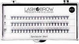 Voňavky, Parfémy, kozmetika Falošné riasy - Lash Brown Premium Flare Silk Lashes Spectacular Short
