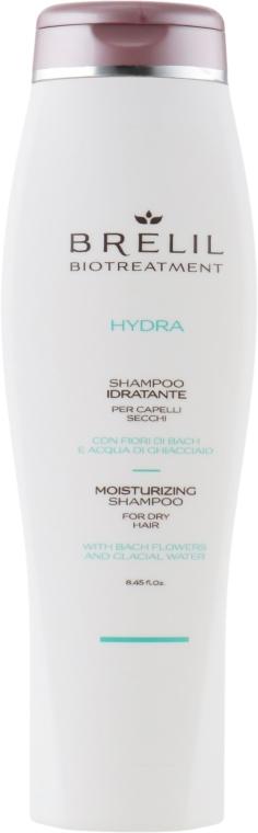 Hydratačný šampón - Brelil Bio Treatment Hydra Shampoo — Obrázky N1
