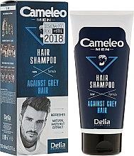 Voňavky, Parfémy, kozmetika Šampón pre mužov redukujúci sivé vlasy - Delia Cameleo Men Against Grey Hair Shampoo