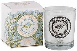 Voňavky, Parfémy, kozmetika Panier Des Sens Sea Fennel - Aromatická sviečka