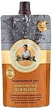 Voňavky, Parfémy, kozmetika Chrániaci farbu šampón-starostlivosť na vlasy - Recepty babičky Agafy Kúpeľná Agafy