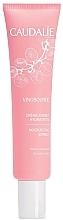 Voňavky, Parfémy, kozmetika Hydratačný krém-sorbet - Caudalie Vinosource Moisturizing Sorbet