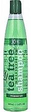 Voňavky, Parfémy, kozmetika Šampón na vlasy - Xpel Marketing Ltd Tea Tree Shampoo