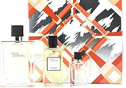 Voňavky, Parfémy, kozmetika Hermes Terre d'Hermes - Sada (edt/100ml + sh/gel/80ml + edt/12,5ml)