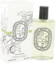 Voňavky, Parfémy, kozmetika Diptyque L'eau des Hesperides - Toaletná voda