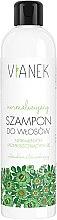 Voňavky, Parfémy, kozmetika Normalizujúci šampón na vlasy - Vianek Normalizing Shampoo