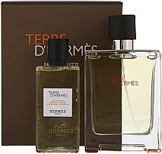 Voňavky, Parfémy, kozmetika Hermes Terre dHermes - Sada (edt/100ml + sh/g/80ml)
