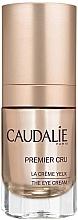 """Voňavky, Parfémy, kozmetika Očný krém """"Globálna ochrana"""" - Caudalie Premier Cru Eye Cream"""