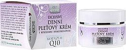 Voňavky, Parfémy, kozmetika Denný krém na tvár - Bione Cosmetics Exclusive Organic Day Facial Cream With Q10