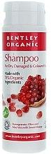 Voňavky, Parfémy, kozmetika Šampón pre suché a poškodené vlasy - Bentley Organic Shampoo For Dry & Damaged Hair