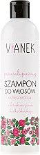 Voňavky, Parfémy, kozmetika Šampón proti lupinám - Vianek Anti-Dandruff Shampoo