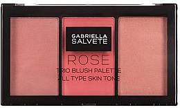 Voňavky, Parfémy, kozmetika Paleta líceniek - Gabriella Salvete Rose Trio Blush Palette