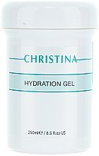 Voňavky, Parfémy, kozmetika Hydratačný gél pre všetky typy pleti - Christina Hydration Gel