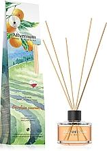 """Voňavky, Parfémy, kozmetika Aromatický difúzor """"Brazílsky pomaranč"""" s tyčinkami - Allverne Home&Essences Diffuser"""