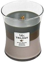 Voňavky, Parfémy, kozmetika Vonná sviečka v pohári - WoodWick Hourglass Trilogy Candle Cozy Cabin