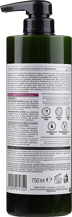 Keratín na vlasy - Bothea Botanic Therapy Reconstructor Keratin pH 5.5 — Obrázky N2