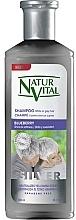 Voňavky, Parfémy, kozmetika Šampón pre svetlé a sivé vlasy Čučoriedka - Natur Vital Silver Shampoo
