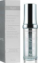 Voňavky, Parfémy, kozmetika Sérum na báze 100% kyseliny hyalurónovej  - The Plant Base Waterfall Moist Balanced Hyaluronic Acid 100