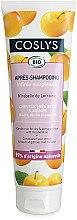 Voňavky, Parfémy, kozmetika Kondicionér s mirabelkovým olejom pre suché vlasy - Coslys Dry Hair Conditioner