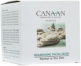 Voňavky, Parfémy, kozmetika Výživná maska pre normálnu a suchú pleť - Canaan Minerals & Herbs Nourishing Facial Mask Normal to Dry Skin