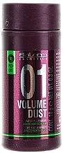 Voňavky, Parfémy, kozmetika Púder na dodanie vlasom objemu a hustoty - Salerm Pro Line Volume Dust 01 Mattifying Powder