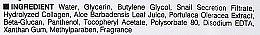 Maska s kolagénom a extraktom slimákov - Dermal Snail Collagen Essence Mask — Obrázky N3