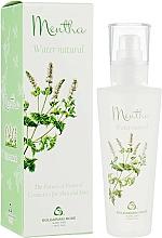Voňavky, Parfémy, kozmetika Sprej na tvár s hydrolatom z mäty - Bulgarian Rose Aromatherapy Hydrolate Mint Spray
