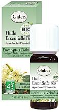 Voňavky, Parfémy, kozmetika Organický éterický olej Eucalyptus Globulus - Galeo Organic Essential Oil Eucalyptus Globulus
