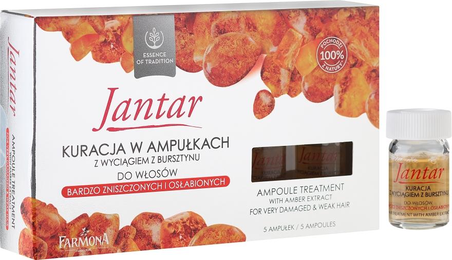Prostriedok v ampulkách pre veľmi poškodené vlasy - Farmona Jantar Hair Treatment In Ampoules