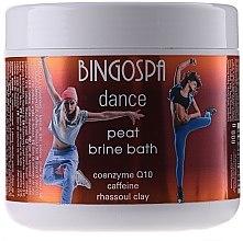 Voňavky, Parfémy, kozmetika Bahenné SPA s marockou hlinou a mätou - BingoSpa Brine Mud SPA With Clay