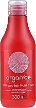 Voňavky, Parfémy, kozmetika Šampón na vlasy - Stapiz Argan'de Moist & Care Shampoo