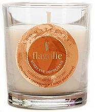 """Voňavky, Parfémy, kozmetika Vonná sviečka """"Relaxačná"""" - Flagolie Fragranced Candle Relaxing Spice"""