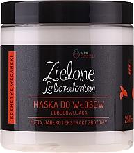 Voňavky, Parfémy, kozmetika Regeneračná maska na vlasy s extraktom z mäty, jabĺk a obilnín - Zielone Laboratorium