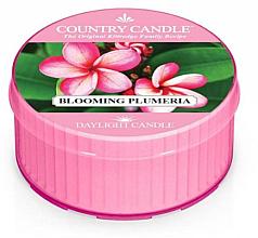 Voňavky, Parfémy, kozmetika Vonná sviečka - Kringle Candle Blooming Plumeria