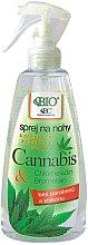 Voňavky, Parfémy, kozmetika Sprej na nohy - Bione Cosmetics Cannabis Foot Spray With Triethyl Citrate And Bromelain