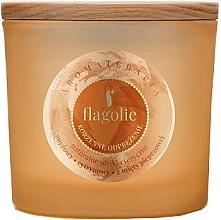 """Voňavky, Parfémy, kozmetika Vonná sviečka v pohári """"Osviežujúca škorica"""" - Flagolie Fragranced Candle Cinnamon Refreshing"""